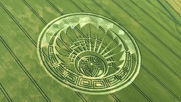 Misteri Dua Orang yang Mengaku Sebagai Pembuat Crop Circle