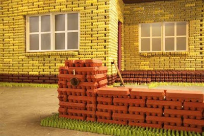 casas de cartón, casas con caja de huevos, casas ecológicas, casas baratas