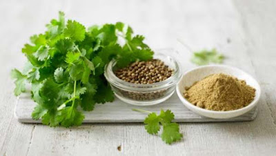 Coriander was for centuries used as a natural remedy for bloating and against gases. Also affect the improvement of digestion, appetite, secretion of digestive enzymes, has a positive effect on the liver.