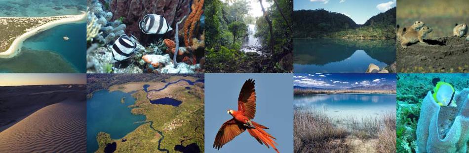 Geoblog: BLOQUE V: ÁREAS NATURALES PROTEGIDAS