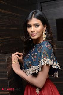 Actress Heeba Patel Pictures at Eedo Rakam Aado Rakam Success Meet  0055