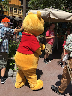 Pooh Critter Country
