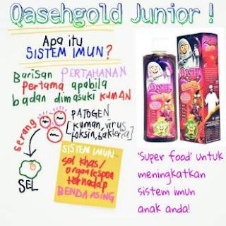 Qaseh Gold Junior | Wajib ada di rumah saya