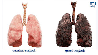 STOP SMOKING - SCITAMIL