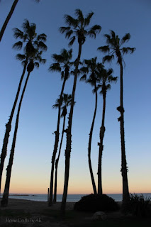 Photos from a day trip to Los Angeles California palm trees sunset cabrillo beach
