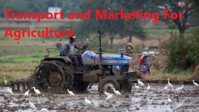 Transport+and+Marketing+For+Agriculture
