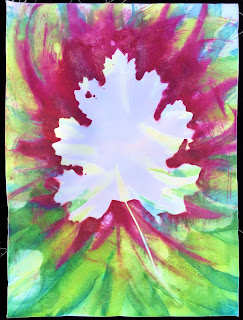 Solarfast prints_Sue Reno_Image 70