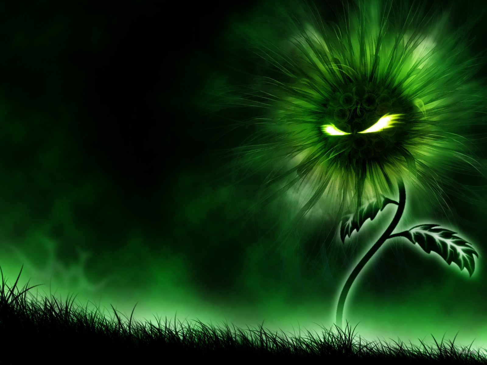 cool wallpapers: July 2011