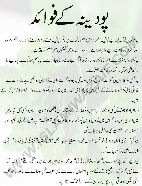 podina ke fawaid in urdu