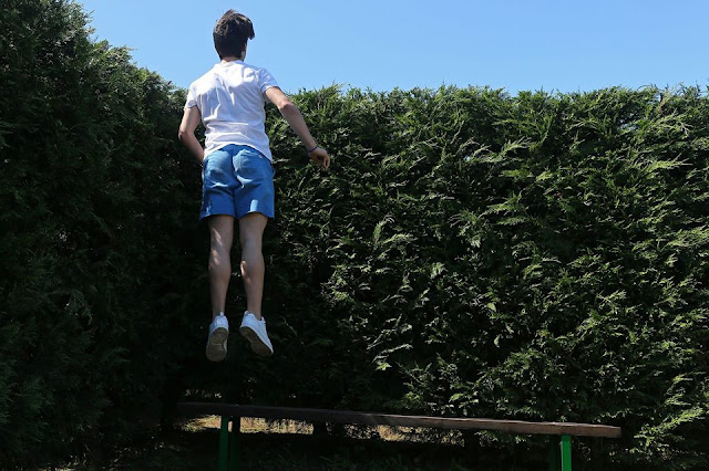 The biggest hedge maze in Spain