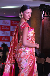 South Indian Celebrities Pos at Love For Handloom Collection Fashion Show  0074.jpg