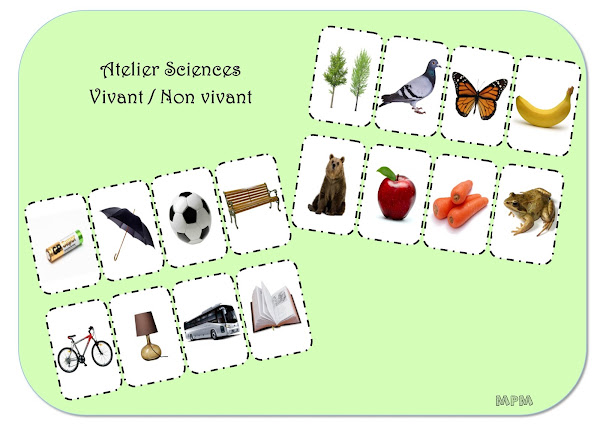 Ateliers autonomes maternelle sciences