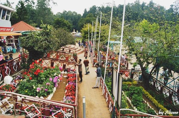 lacul-din-Ooty-India-impresii