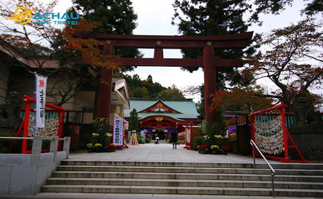 Du lịch Nhật Bản mùa hoa anh đào với nhiều điều mới lạ5