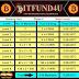BITFUND4U - Earning Plan