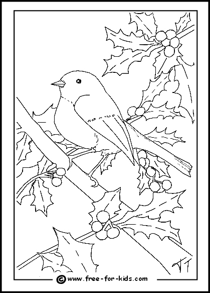 garden winter coloring pages | His Heart of Compassion: Little Winter Birds