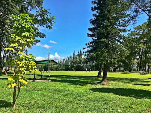 Del Monte Club House and Del Monte Golf Course and Country Club in Manolo Fortich Bukidnon
