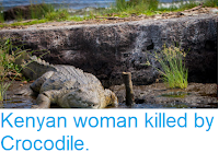 https://sciencythoughts.blogspot.com/2018/08/kenyan-woman-killed-by-crocodile.html