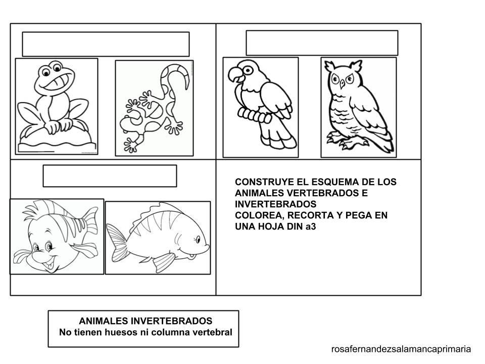 Maestra de Primaria: Animales vertebrados e invertebrados ...