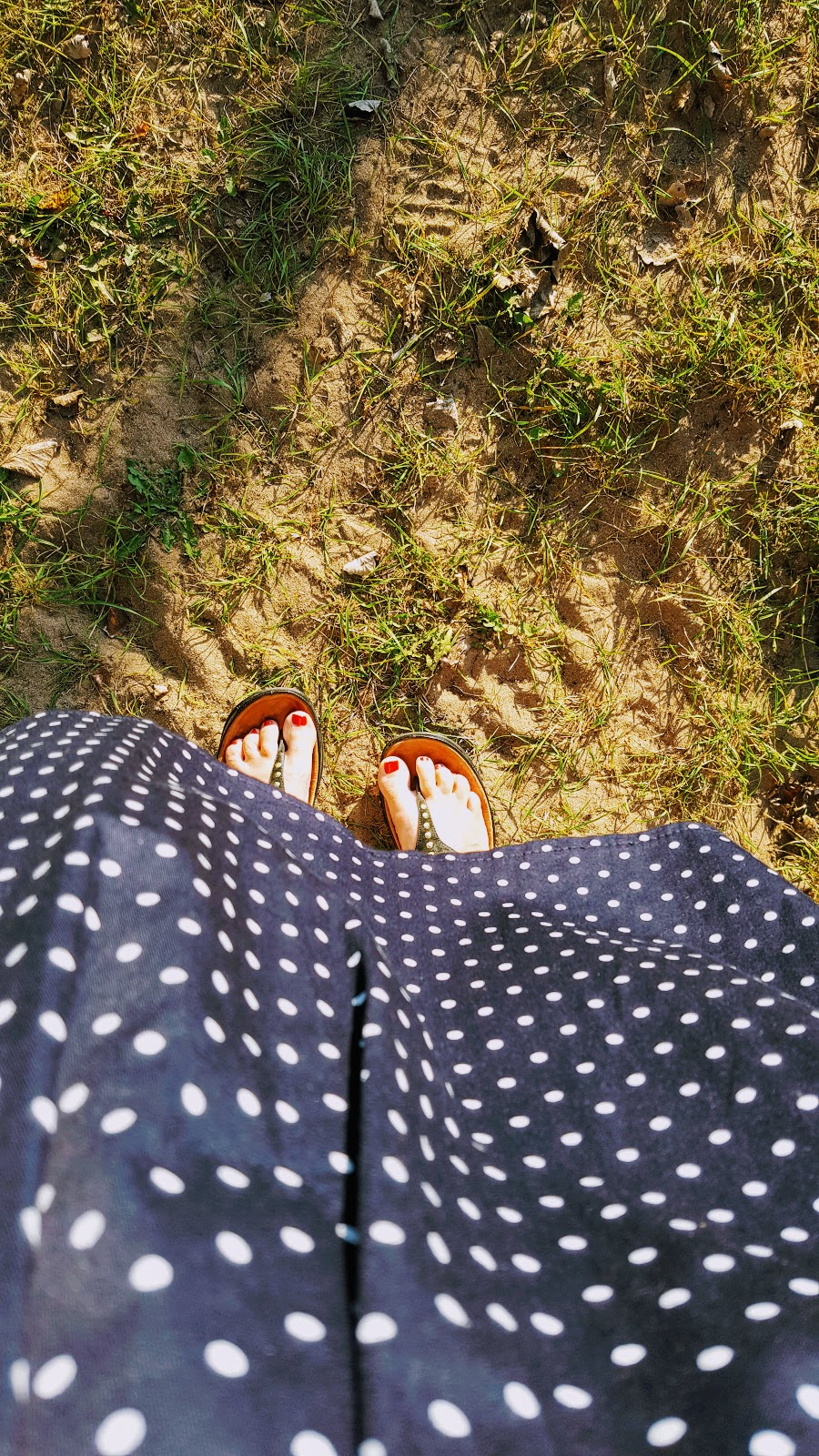 Polka Dots And Holiday Snaps
