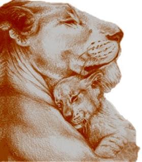 Il toro, la leonessa e il cinghiale (Esopo)
