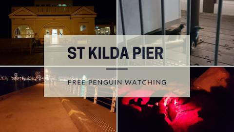 【墨尔本景点】墨尔本亲子游@Day4 Part 3 圣科达码头免费看企鹅St Kilda Pier Free Penguin Watching