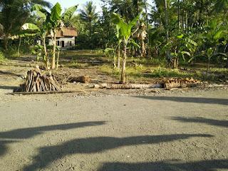 Tanah Murah Dijual Cepat Kulonprogo Yogyakarta Sudah Pekarangan