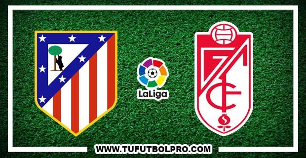 Ver Atlético Madrid vs Granada EN VIVO Gratis Por Internet Hoy 15 de Octubre 2016
