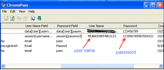 Online Tricks and Downloads: Google Chrome Password Recovery
