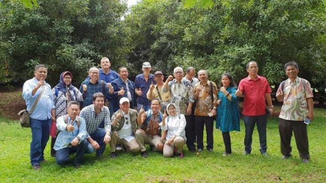 Reboisasi Lahan Kritis Danau Toba, Rapidin Simbolon 'Angkut' Pohon Produktif dari Australia