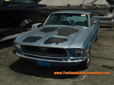 1968 ford mustang gt fastback abandoned rusty 302 5.0 retro florida dylan benson
