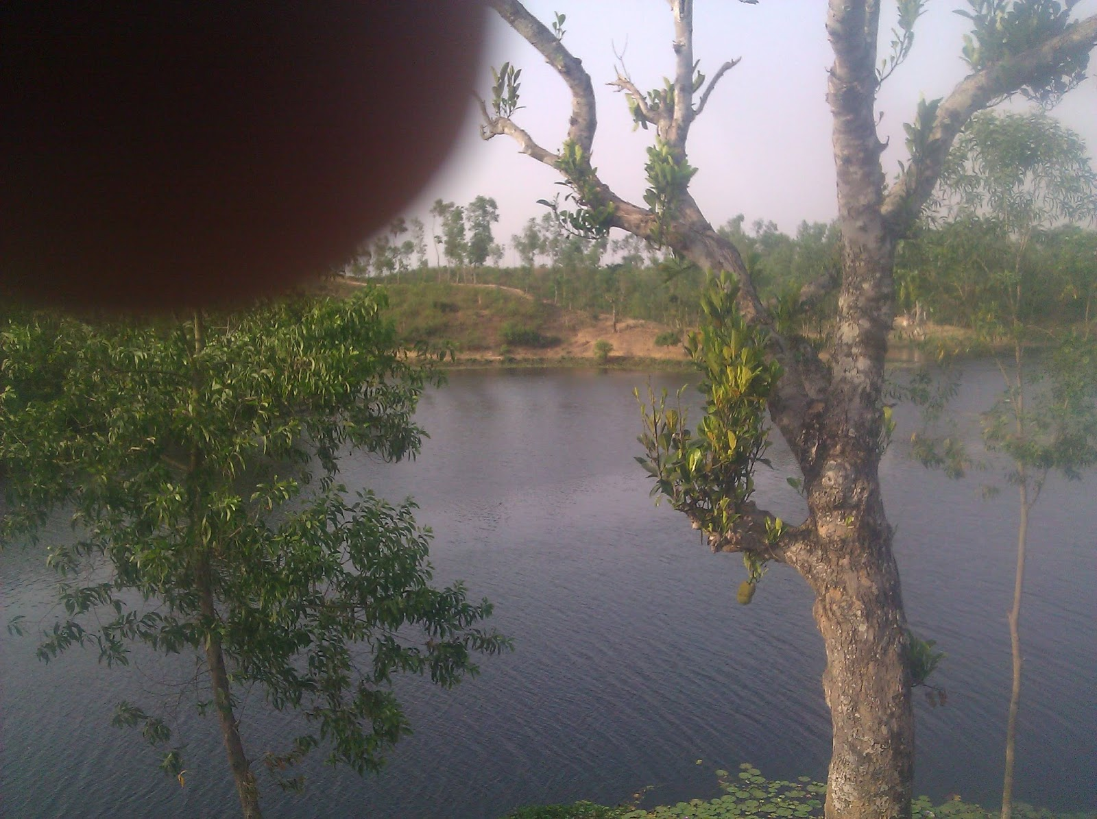 Bussiness environment in bangladesh