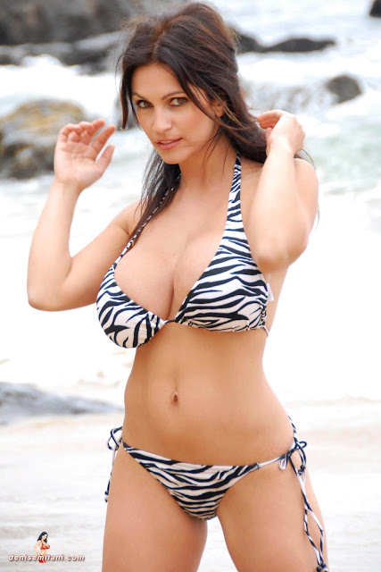 Denise Milani Beach Zebra HD Sexy Photoshoot Hot Photo 18