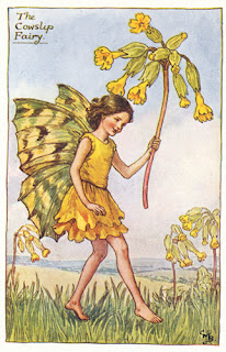 The Cowslip Fairy, Flower Fairies, Cicely Mary Barker