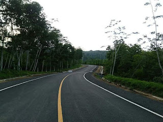 Jalan Lintas Selatan (JLS) yang menghubungkan Banyuwangi - Jember sudah hampir tersambung