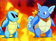 Squirtle y Wartortle