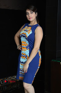 Actress Anchor Manjusha Pictures in Blue Short Dress at Jaguar Movie Success Meet .COM 0008.jpg