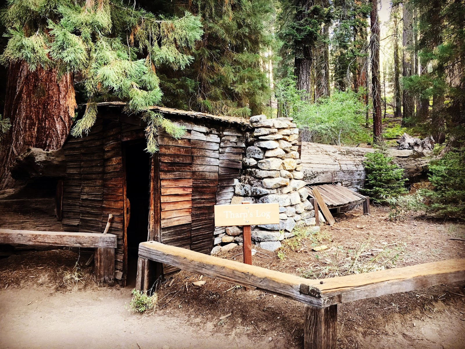 Sensory overload sequoia national park giant trees and for Log cabin sequoia national park