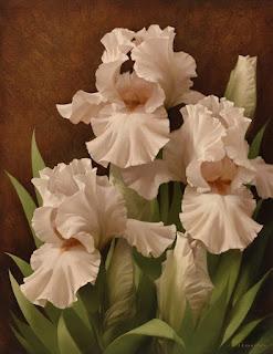 flores-blancas-pinturas