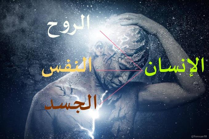 قراءة في كتاب ماهية النفس محمد جلال القصاص