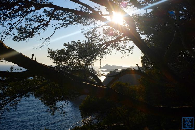 Le Chameau Bleu - Blog Voyage Sud Est France -Tourisme Var Six Fours les Plages