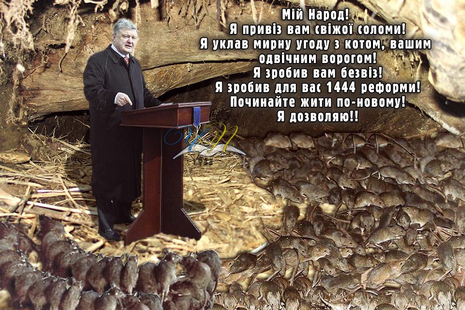 Закарпатье стало объектом атаки российских спецслужб, - Порошенко - Цензор.НЕТ 846