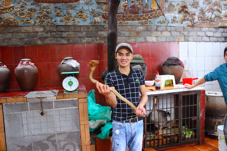 snake restaurant nguyen van duc cobra