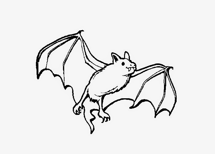 fruit bat coloring pages - photo#11