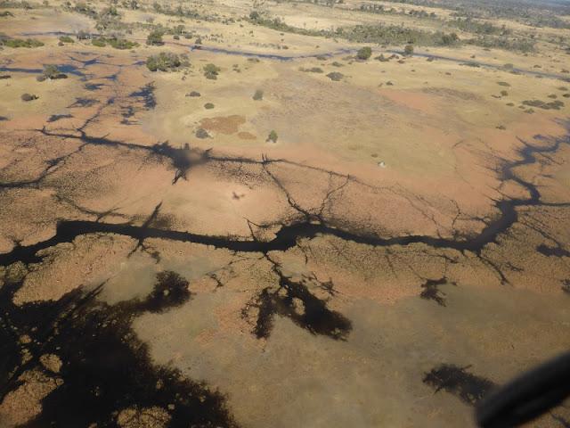 Delta del Okawango, scenic flight