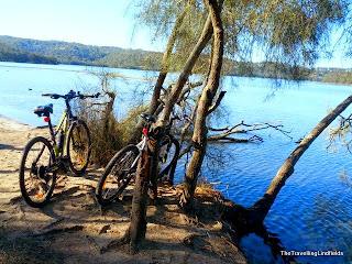 Narrabeen Lagoon Trail