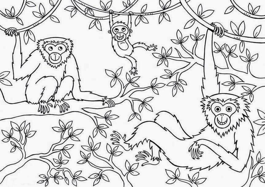 Monkey Coloring Pages Jungle