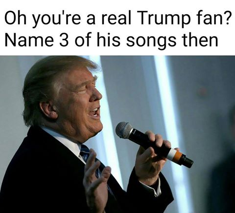 Oh, you're a real Trump fan? Name 3 of his songs then.