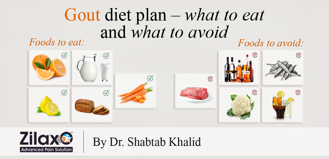 what is a good diet plan for gout