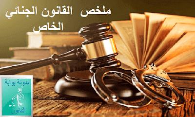 القانون الجنائي الخاص PDF